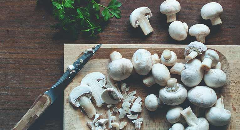 vitamin d rich mushrooms